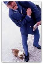 Dog Biting Postman