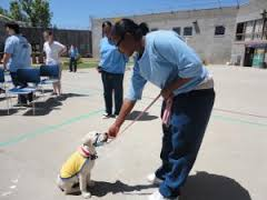 Dogs with Female Inmates