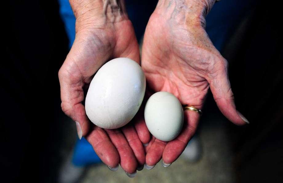 Super Egg