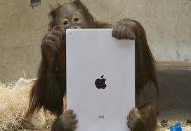 iPads for Apes