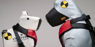 Crash Test Dogs on Animal Radio®
