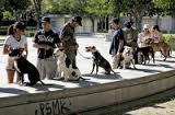 Cornelius Austin The Dog Man on Animal Radio®