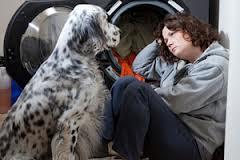 Empathetic Dogs
