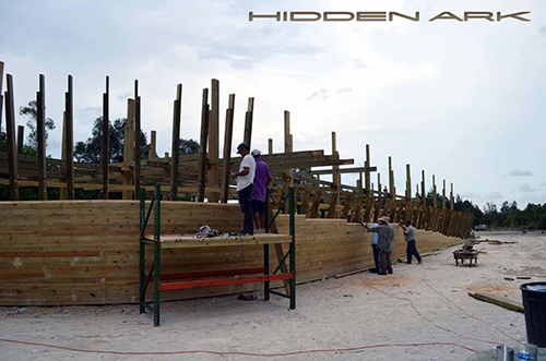 Building Noahs Ark