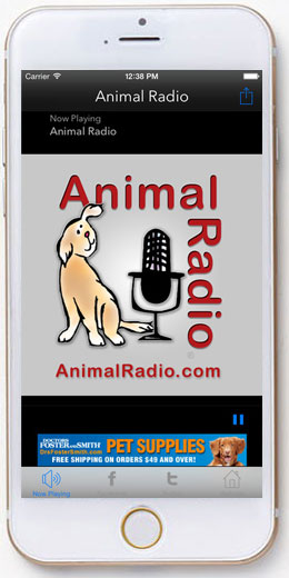 Download the free Animal Radio App - Its been updated