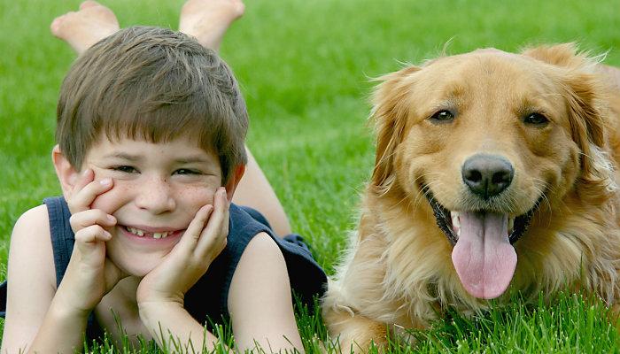 Kids prefer pet over sibling