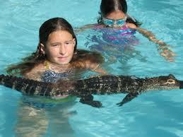 Kids and Alligators