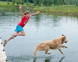Lake Algae Harmful for Dogs