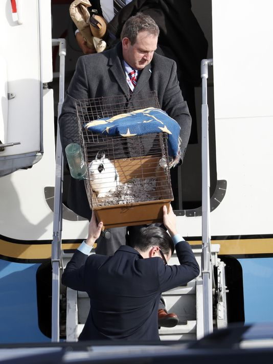 The Secret Service removes Mike Pence's Rabbit from Air Force Two