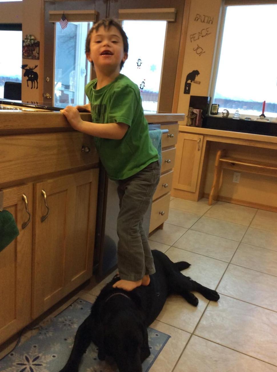 Palins kid stands on dog