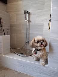 Pet Friendly Houses on Animal Radio®
