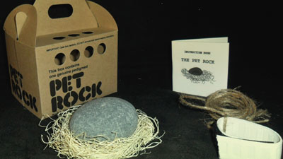 How about a pet rock for Christmas
