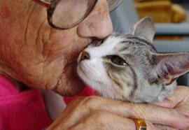 Pets for the Elderly - Hero People