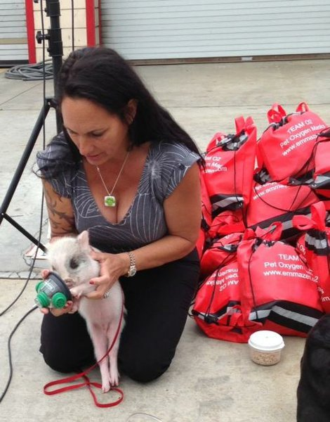 Debra Jo Chiapuzio is on Animal Radio