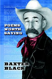 Poems Worth Saving book cover