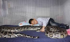 python babysitter