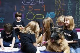 K9s in school