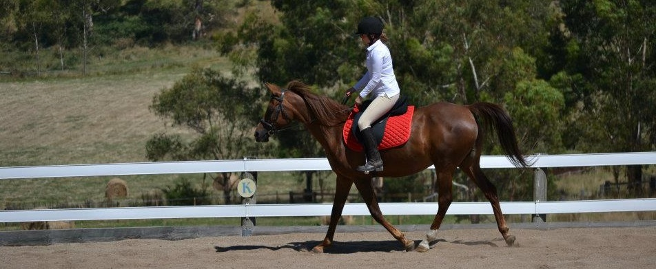 Choosing the right horseback riding bra